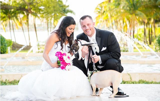 pet em casamento10