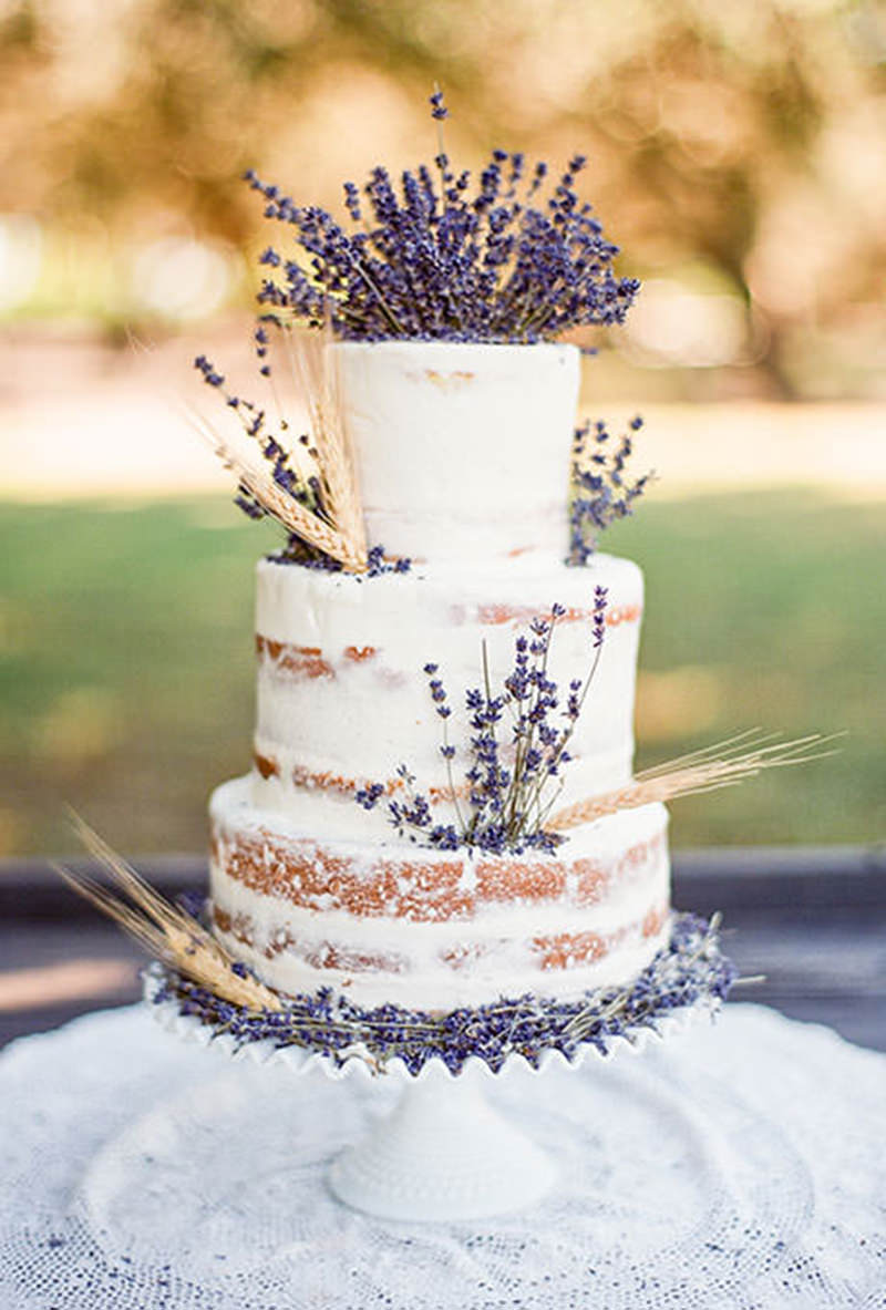 1578 naked cake