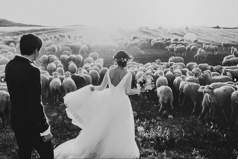 12- fotos-de-casamento-arte-mais-bonitas