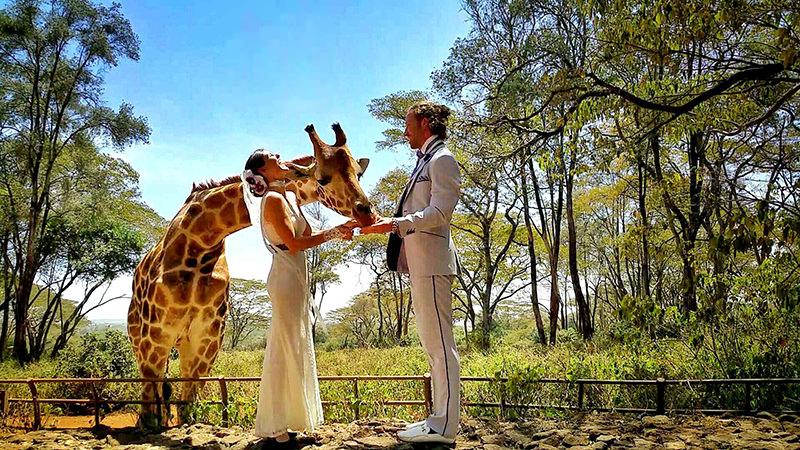 Noivos-se-casam-38-vezes-em-12-países-diferentes-nairobi-19