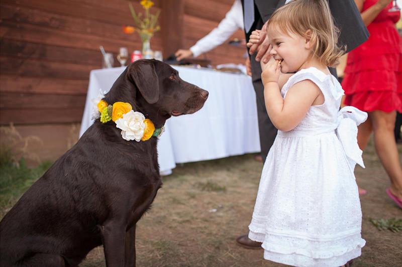 cao-e-crianca-no-casamento