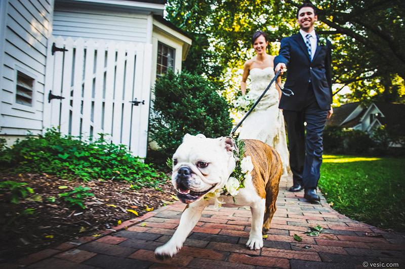 noivo-passeando-com-o-cachorro-no-casamento