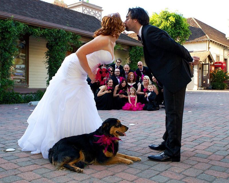 noivos-padrinhos-e-cachorro-no-ensaio-fotografico-pos-casamento