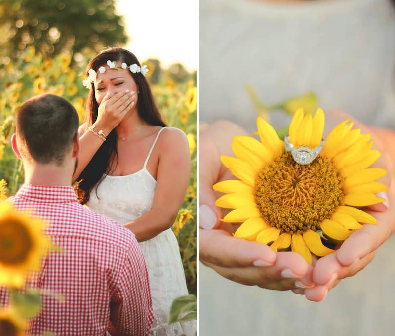 pedido-de-casamento-na-sessão-de-fotos