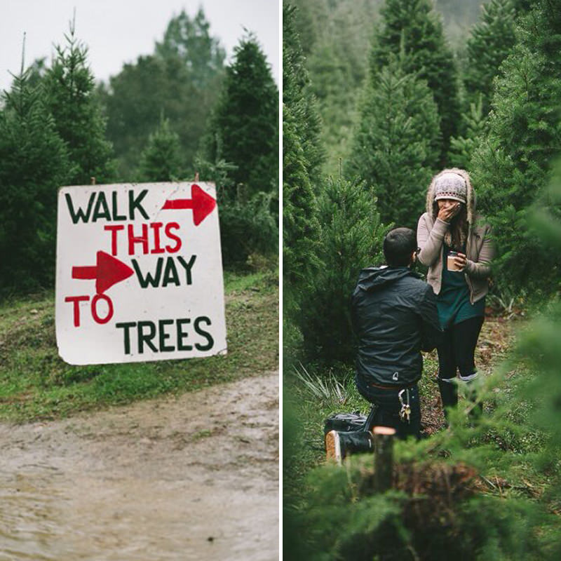 pedido-de-casamento-na-trilha