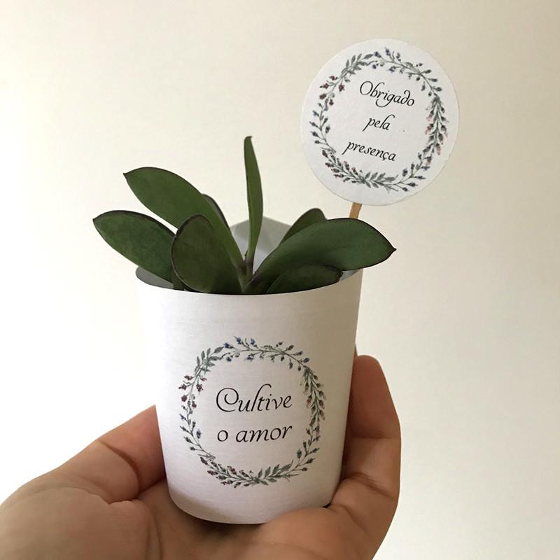 13-vasinho-de-planta-para-lembracinha