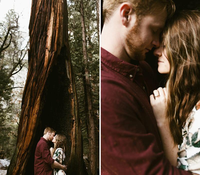 ensaio-de-noivado-na-floresta