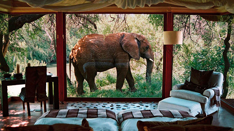 01-hotel-sanctuary-makanyane-safari-na-africa-do-sul
