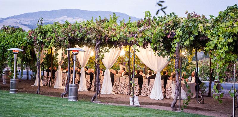 festa-de-casamento-na-vinicula