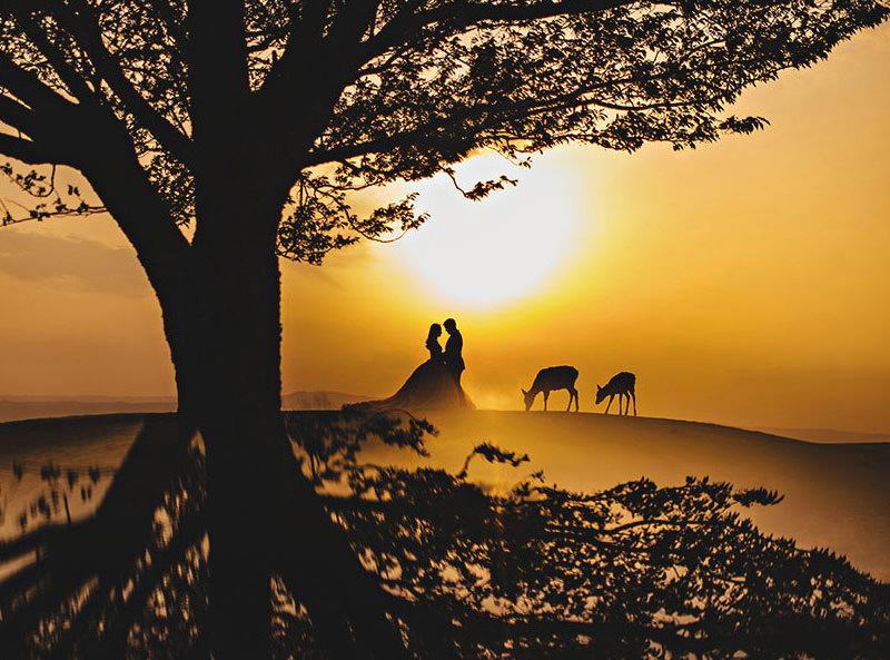 fotografia-de-casamento-ao-por-do-sol