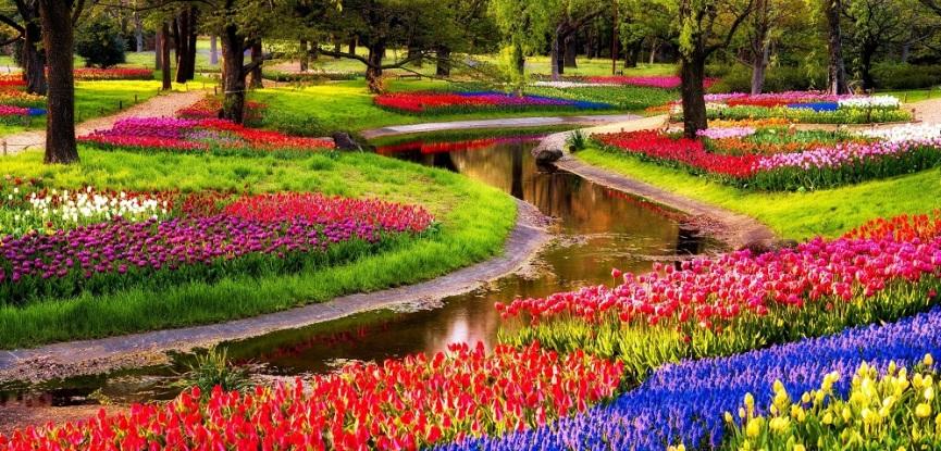 Keukenhof-Amsterda-Jardim-Holanda-pedido-de-casamento-em-jardins-capa