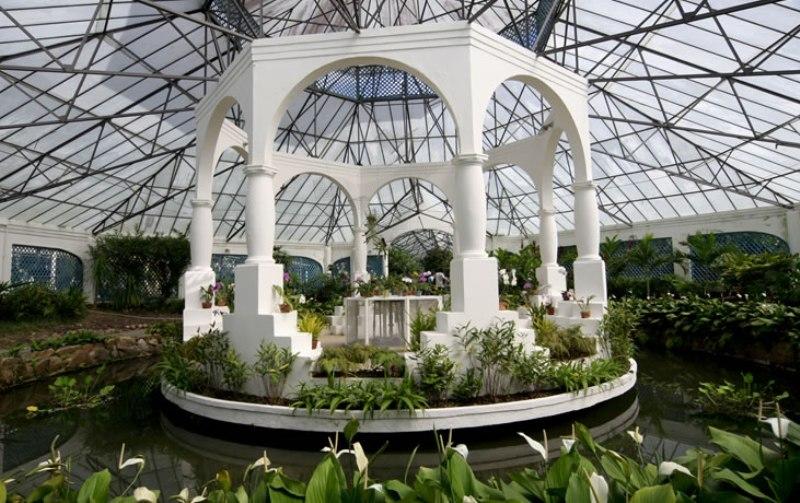 jardim-botanico-rio-de-janeiro-orquidario