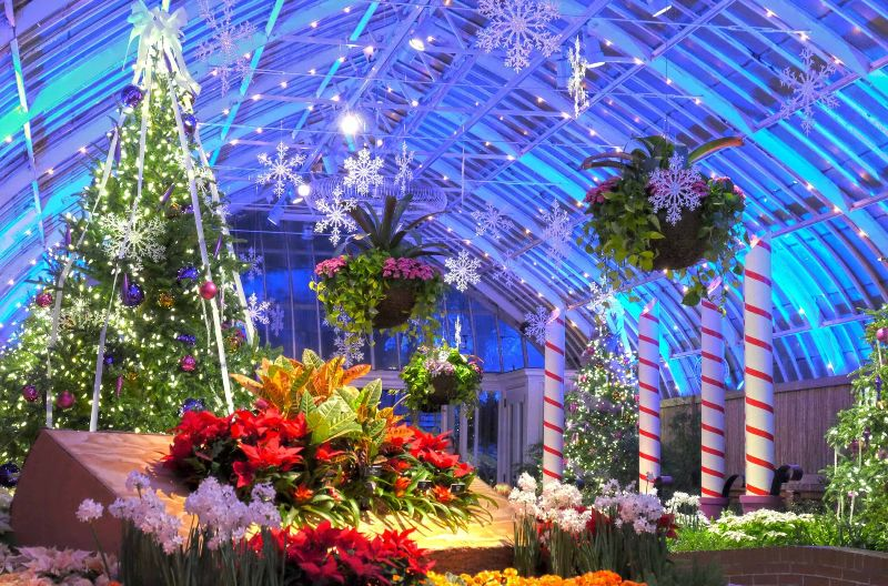 pittsburgh-jardim-botanico-pedido-de-casamento
