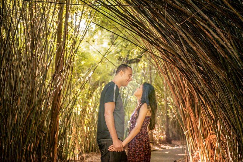 pedido-de-casamento-jardim-botanico-sao-paulo