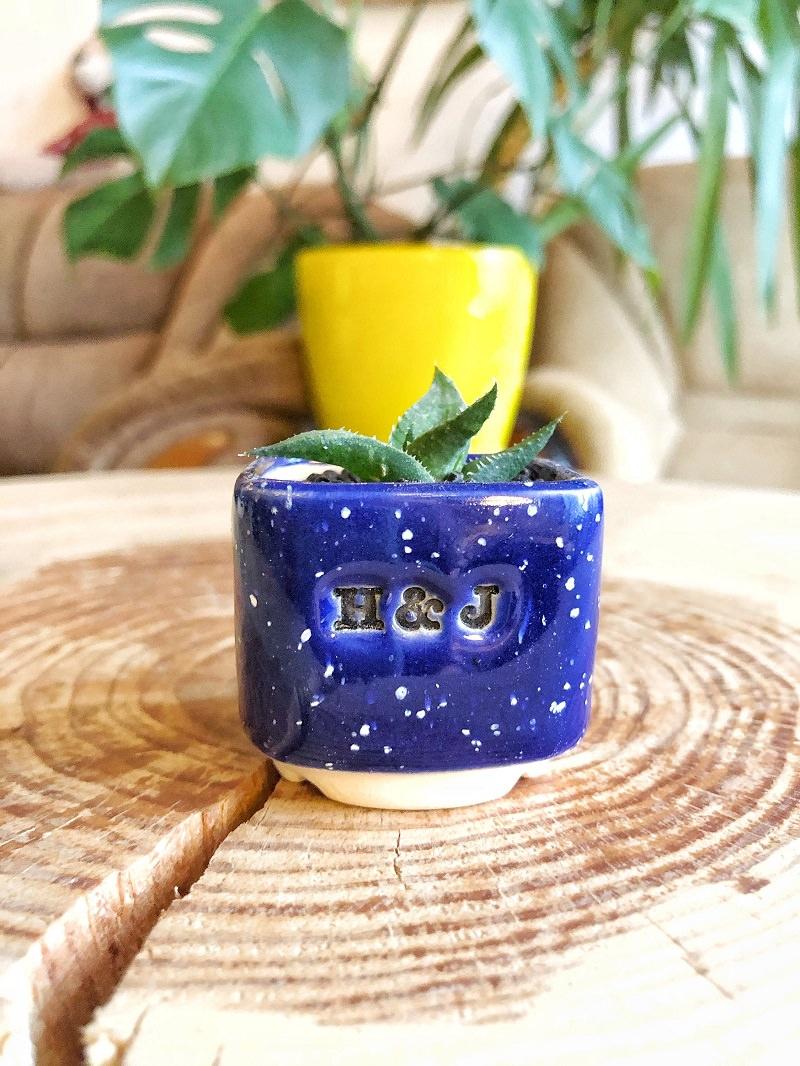 5-plantinha-com-vaso-de-ceramica-personalizado-para-casamento