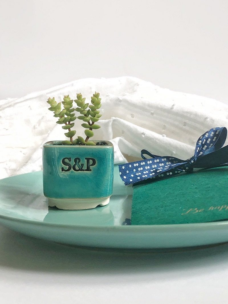 6-plantinha-suculenta-com-vaso-de-ceramica-personalizado-para-casamento