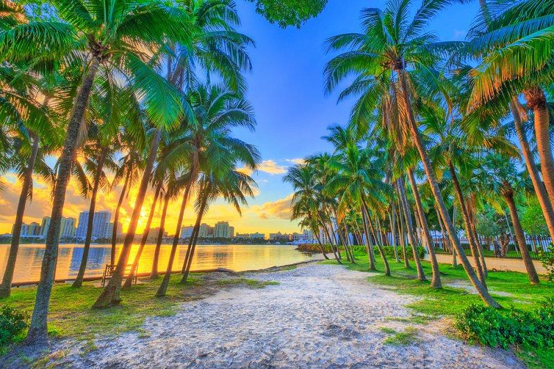 praia-para-descansar-na-lua-de-mel-florida-palm-beach